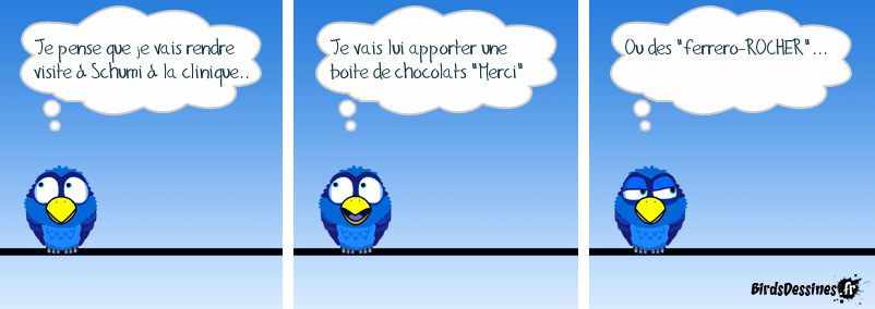 Chocolats pour Schumi