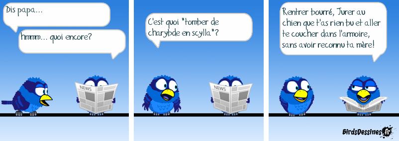 http://www.birdsdessines.fr/bds/2014/01/05/1388932647.png