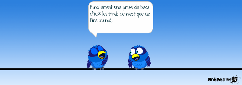 prise de becs chez les birds