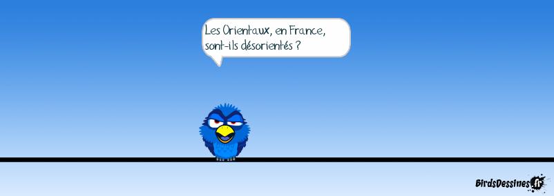 Les Orientaux, c'est les natifs de Lorient ?
