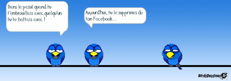 La vie avec Facebook