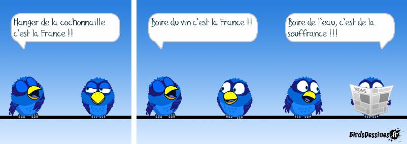 C'est ça la France