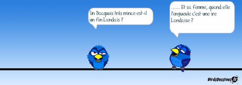 Ah Les landes .....