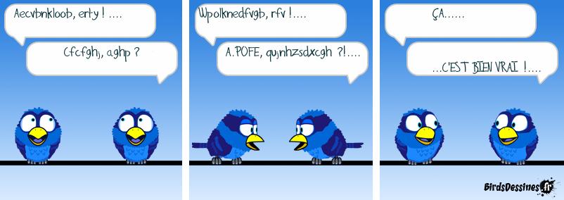 langage birdique
