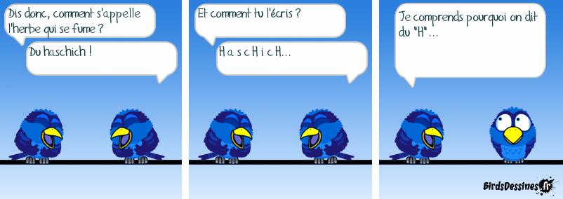 Haschich