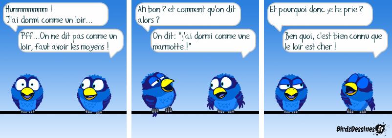 Parlons géographiquement Français !