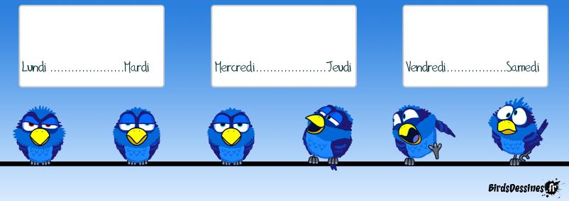 Si j'étais un bird, mon humeur se résumerait comme ceci !!!