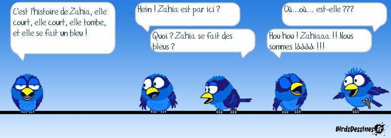 L'histoire de Zahia
