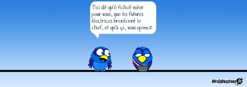Elections, piège à c...