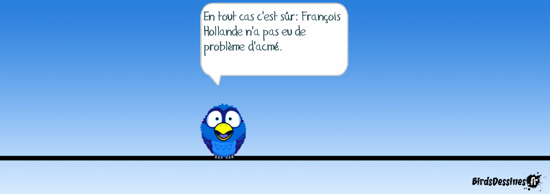 Hollande et ses promesses (2)