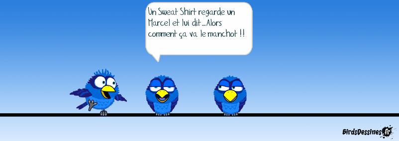 Le Sweet Shirt et le Marcel