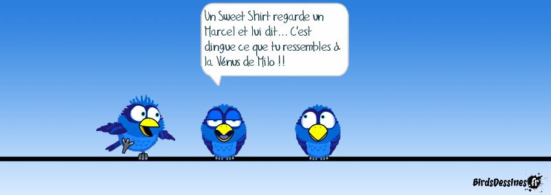 Le Sweet Shirt et le Marcel très très très inspiré par Mister blues
