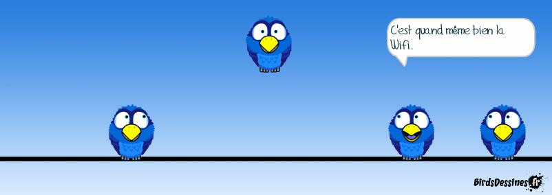 Bird sans fil