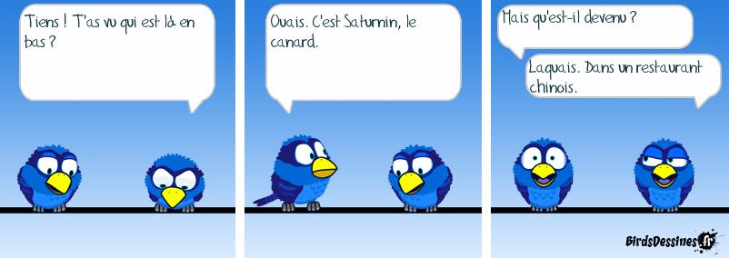 Canard laqué
