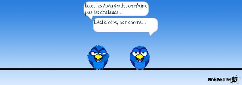 Goûts et dégoûts d'Auvergne...