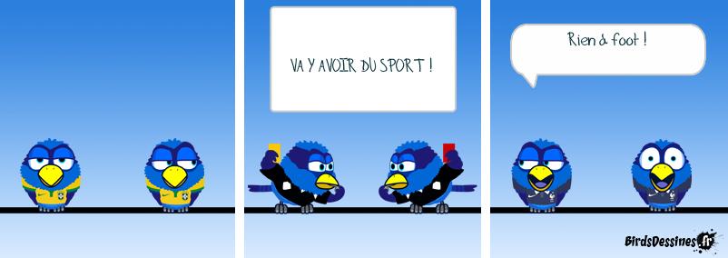Les Birds et la coupe du monde de football 2014