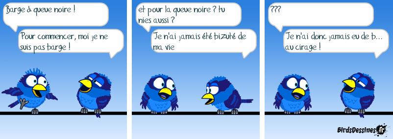 nom d'oiseau ...