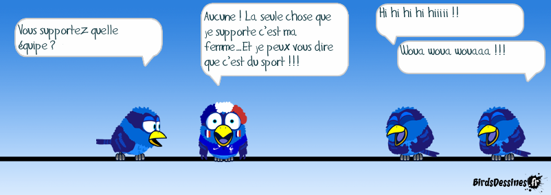 Le supporter