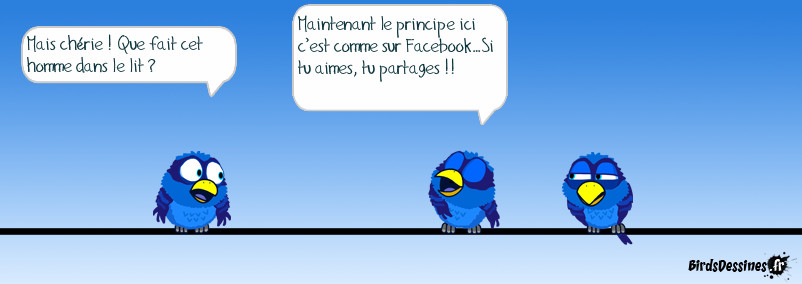 Le principe Facebook