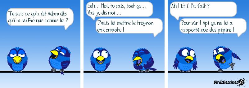 ADAM CROQUE LA POMME - SUITE...