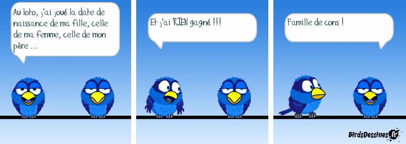 Birds de comptoir