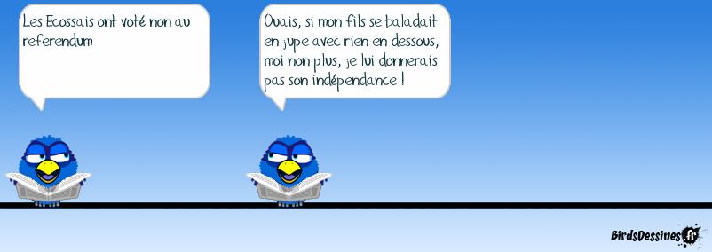 Referendum en Ecosse