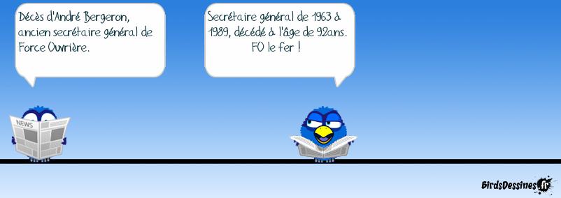 Où es-tu, Blue Parrot ?