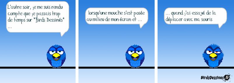 Vive les Birds