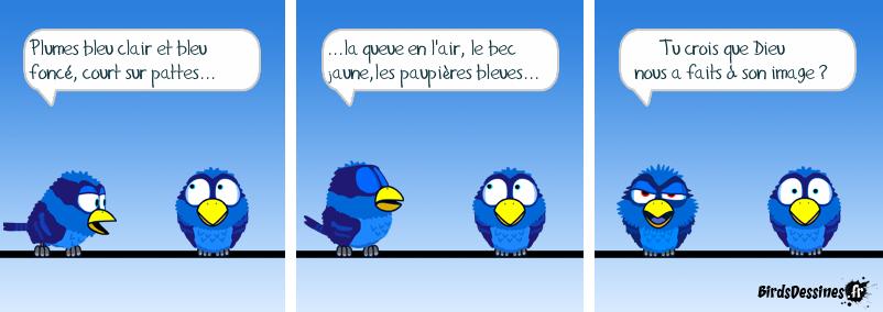 La création du Bird