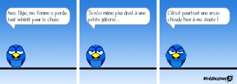 LE GRAND ÂGE GLACIAIRE