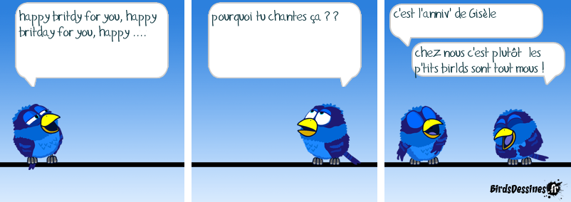 anniversaire humour birds