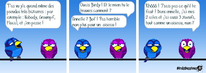 Les pseudos birds