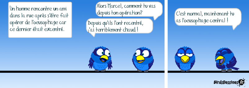 Oiseauphagite