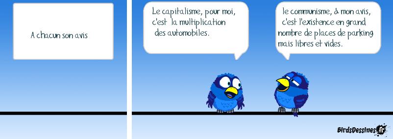 Capitalisme et communisme, deux avis