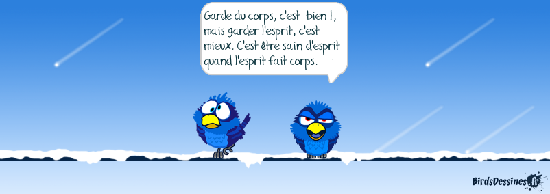 Birdsdessines Fr Partagez Vos Birds Dessinés