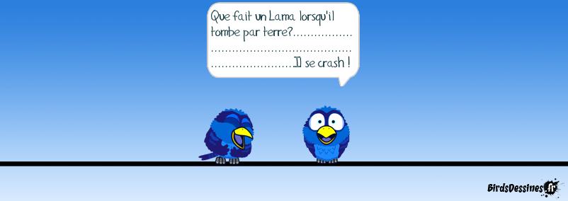 LAMA AIRLINE