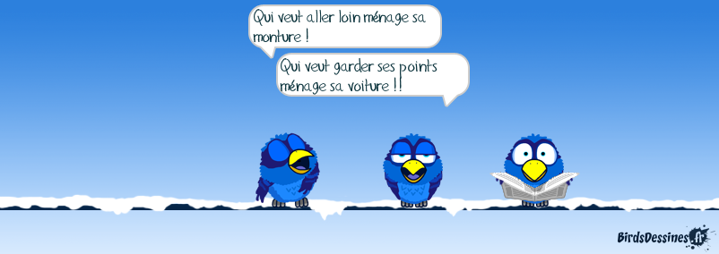 Proverbe Mister blues