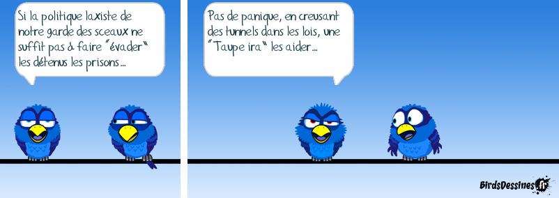 Christianne T.   Sauvegarde des sots.