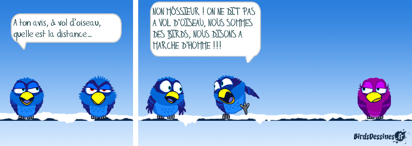 Expression de Birds