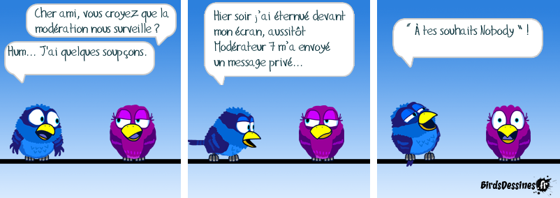 Attention, Bird-Brother vous observe.  ;-)