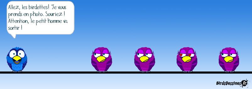 vengeance d'oiseau