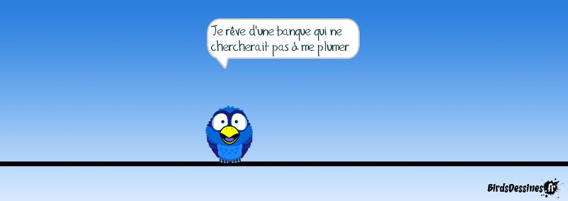 Bird Elmaleh