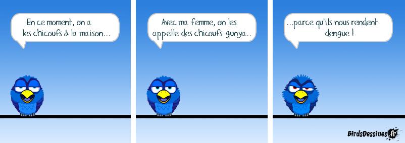 Chicoufs-gunya