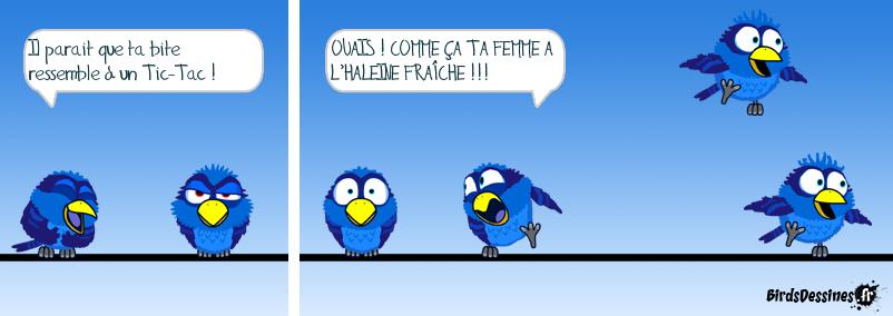 LE TIC-TAC