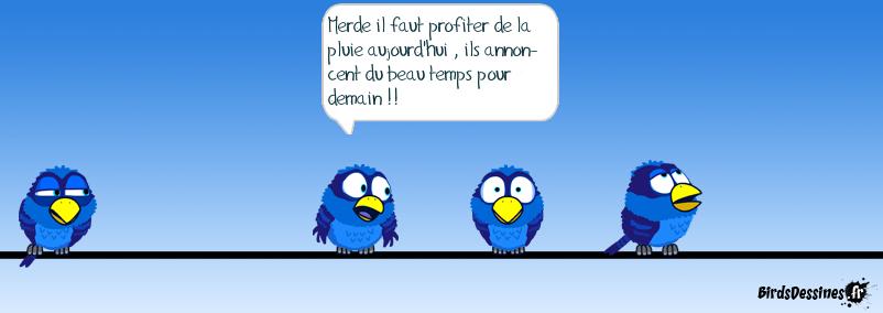 Ils sont fous ces bretons...!!