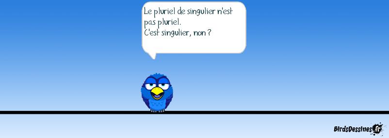 singulier/pluriel - pluriel singulier