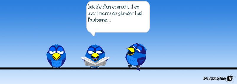 Suicide d'ecureuil...