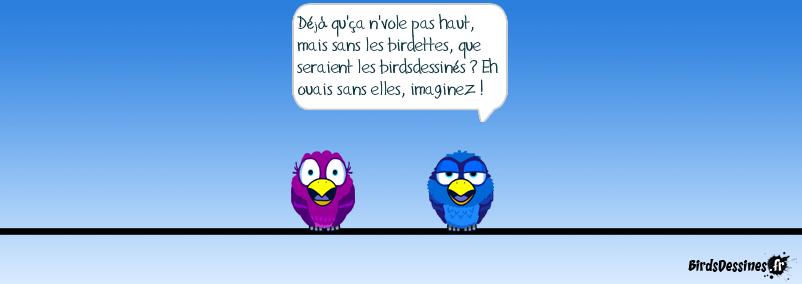 Birds et birdettes