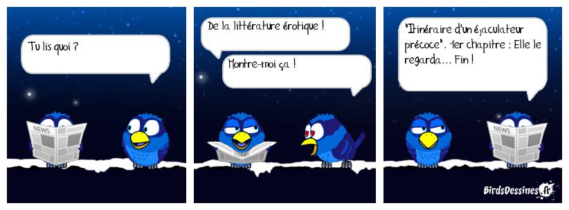 LITTÉRATURE ÉROTIQUE