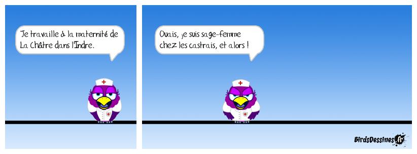 Les castrais: habitants de La Châtre !